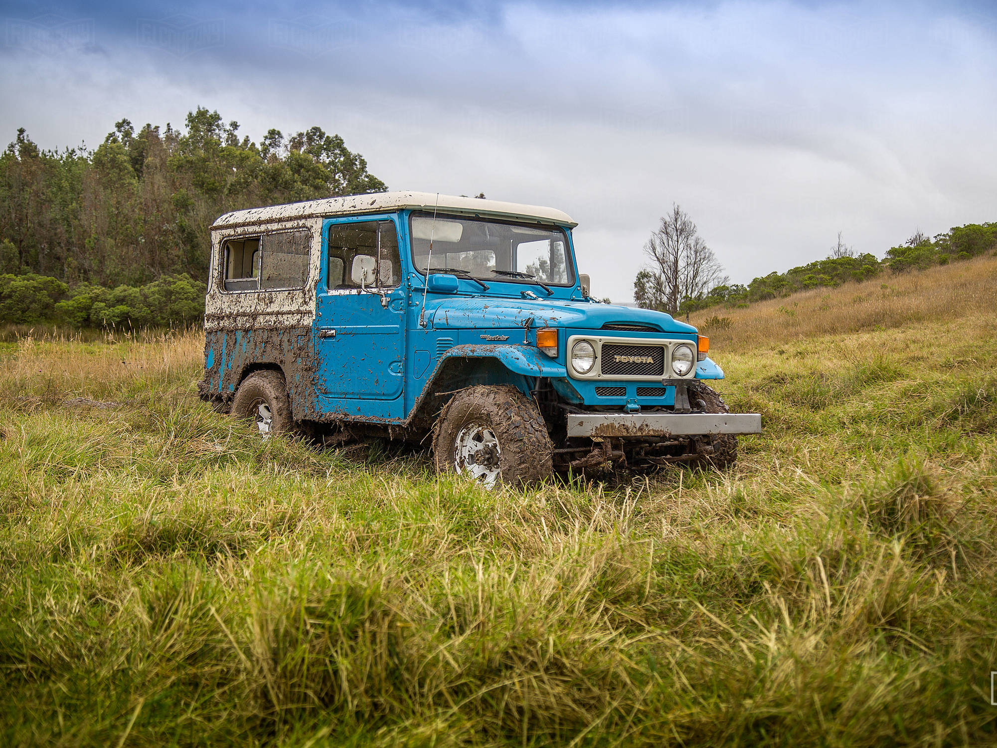 Powerful 1982 Cadet Blue FJ43 for Chesapeak, VA